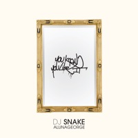 You Know You Like It - Single - DJ Snake & AlunaGeorge mp3 download