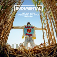 These Days (feat. Jess Glynne, Macklemore & Dan Caplen) [Remixes] - EP - Rudimental mp3 download