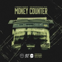 Money Counter (feat. Moneybagg Yo) - Single - Chris Pride mp3 download