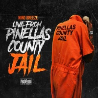 Live from Pinellas County Jail - Single - Nino Breeze mp3 download