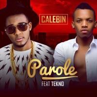 Parole (feat. Tekno) - Single - Calebin mp3 download