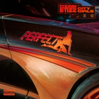 Perfect (feat. City Girls) - Single - Cousin Stizz mp3 download
