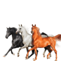 Free Download Lil Nas X, Billy Ray Cyrus & Diplo Old Town Road (Diplo Remix) Mp3