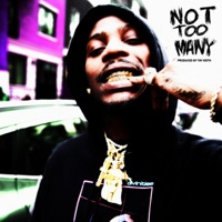 Not Too Many - Single - Flipp Dinero mp3 download