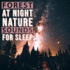 Natural Sound Makers, Nature Recordings & Natural Sample Makers - Forest at Night - Nature Sounds for Sleep Mp3 Download