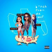 B*tch From Da Souf (Remix) - Single - Mulatto, Saweetie & Trina mp3 download