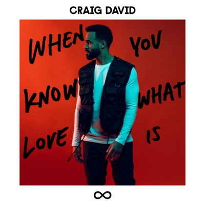 When You Know What Love Is - Craig David mp3 download