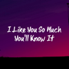 Ysabella - I Like You So Much You'll Know It