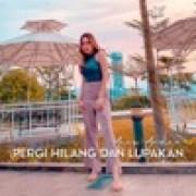 download lagu Anne Ardina Pergi Hilang Dan Lupakan