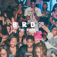 Birds (feat. Blueface) - Single - Jaychef mp3 download