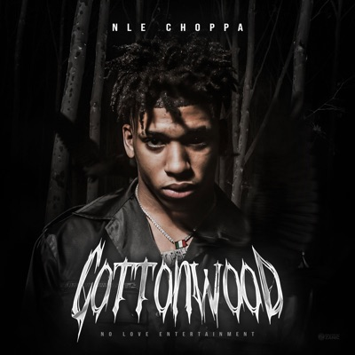 Shotta Flow [Remix] - NLE Choppa Feat. BlueFace mp3 download