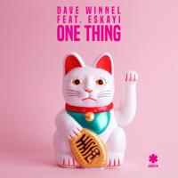 One Thing (feat. Eskayi) Dave Winnel
