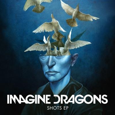 Shots (Broiler Remix) - Imagine Dragons Feat. Broiler mp3 download