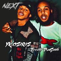 Next (feat. YK Osiris) - Single - Teezie ThaGawd mp3 download