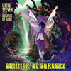 Little Steven - Summer of Sorcery (feat. The Disciples of Soul)  artwork