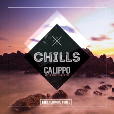 Never Really Liked You - Calippo mp3 download
