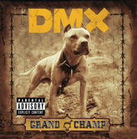 DMX - Where the Hood At Mp3