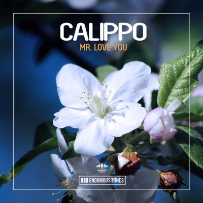 Mr. Love You - Calippo mp3 download