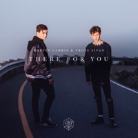 There for You - Single - Martin Garrix & Troye Sivan mp3 download