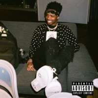 No Complaints (feat. Offset & Drake) - Single - Metro Boomin mp3 download