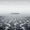 Joshua Redman - Still Dreaming (feat. Ron Miles, Scott Colley & Brian Blade)  artwork