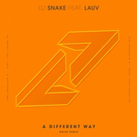 A Different Way (feat. Lauv) [Noizu Remix] - Single - DJ Snake mp3 download