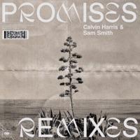 Promises (Remixes) - Calvin Harris, Sam Smith mp3 download