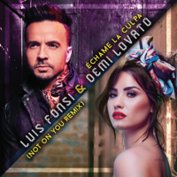 Échame La Culpa (Not On You Remix) Luis Fonsi & Demi Lovato MP3