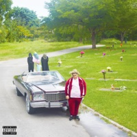 Ice Out (feat. Blackbear) - Single - Fat Nick mp3 download