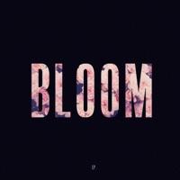 Bloom - EP - Lewis Capaldi mp3 download