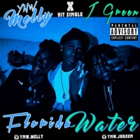 Florida Water (feat. J. Green) - Single - YNW Melly mp3 download