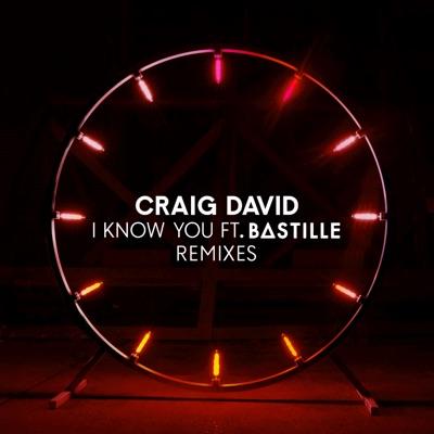 I Know You [Vigiland Remix] - Craig David Feat. Bastille mp3 download