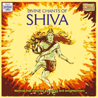 Shiva Tandava Stotram Uma Mohan