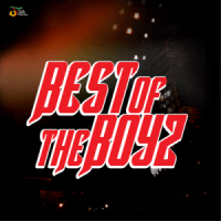 Best of the Boys - Various Artists