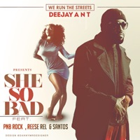 She so Bad (feat. Santos, Reese Rel & PnB Rock) - Single - Deejay Ant mp3 download