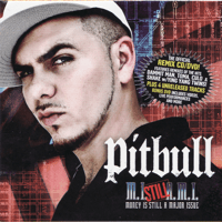 Turnin Me On Remix Pitbull & Nina Sky MP3