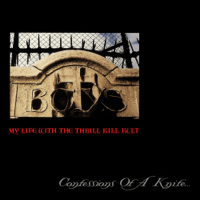 The Days of Swine & Roses My Life With the Thrill Kill Kult MP3