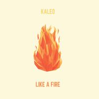 Like a Fire Kaleo