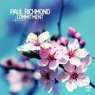 Commitment - Paul Richmond mp3 download