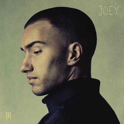 Hvis Det Ik' Skal Være Os - Joey Moe mp3 download