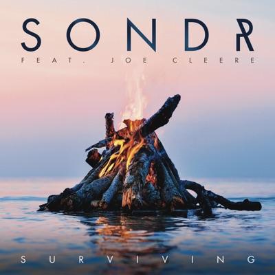 Surviving - Sondr Feat. Joe Cleere mp3 download
