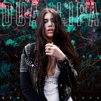 New Love (Remixes) - Single - Dua Lipa mp3 download