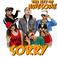 Sorry - Parody of Justin Bieber's