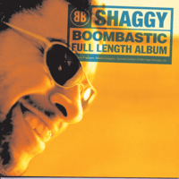 Boombastic Shaggy MP3