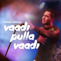 Vaadi Pulla Vaadi Hiphop Tamizha MP3