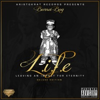 L.I.F.E - Leaving an Impact for Eternity (Deluxe Edition) - Burna Boy mp3 download