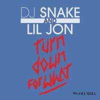 Turn Down for What DJ Snake & Lil Jon MP3