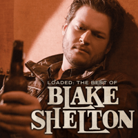 Who Are You When I'm Not Looking Blake Shelton