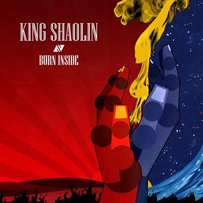 Money In My Soul - King Shaolin mp3 download