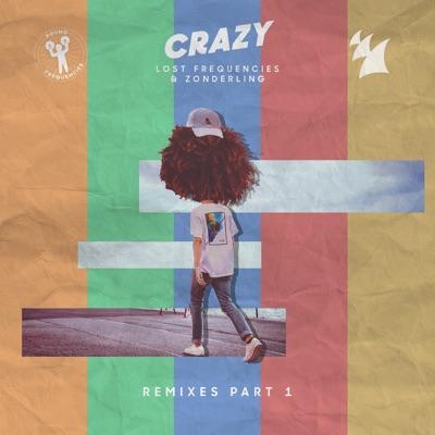 Crazy (Hiddn Remix) - Lost Frequencies & Zonderling mp3 download